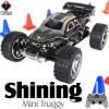 WLTOYS (WL-2019-BK) Shining Mini Truggy RTR (Black) - 49MHz